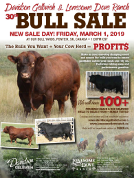 Click here to see the Davidson Gelbvieh 2019 Bull Sale catalogue.