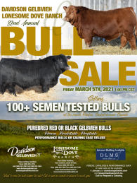 Click to see an enlargement of the Davidson and Lonesome Dove Gelbvieh Sale ad.  The sale is March 5, 2021.