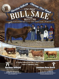 Click here to see the Davidson Gelbvieh 2011 Bull Sale catalogue.